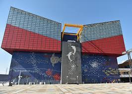 海遊館画像