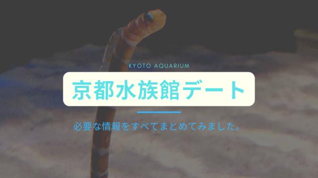 京都水族館デート