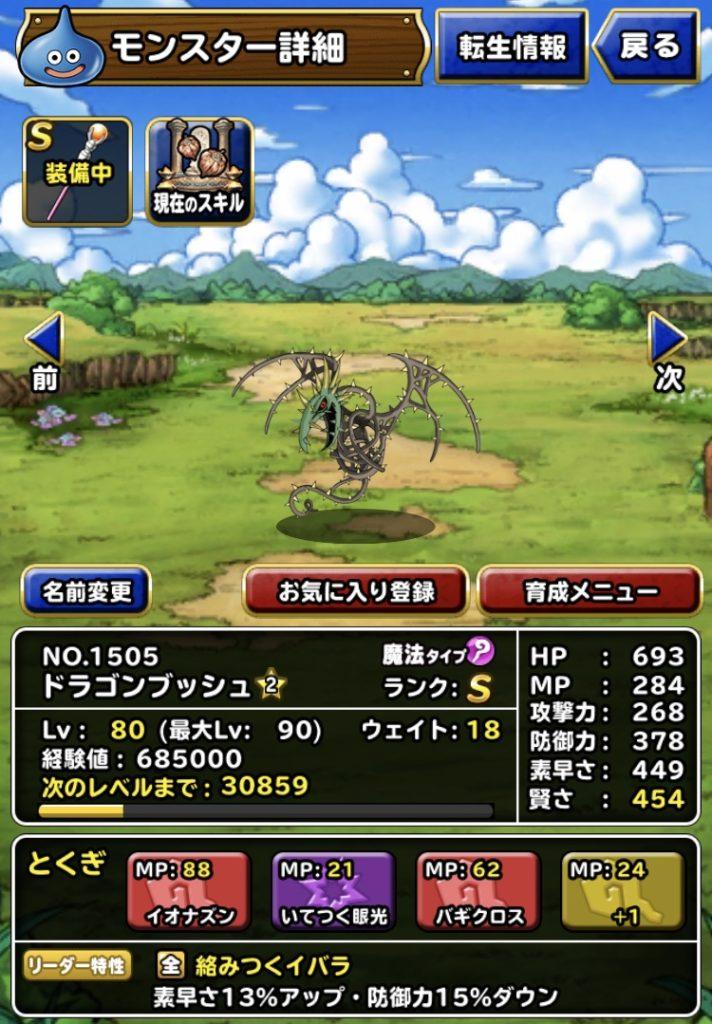 賢者の杖を装備させたドラゴンブッシュ