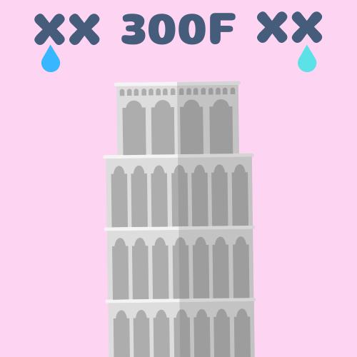 ホロンの塔300F